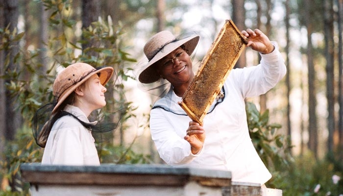 Photo: This is how we do it. August (Queen Latifah) shows Lily (Dakota Fanning) the bee-keeping ropes in 'Life of Bees.'