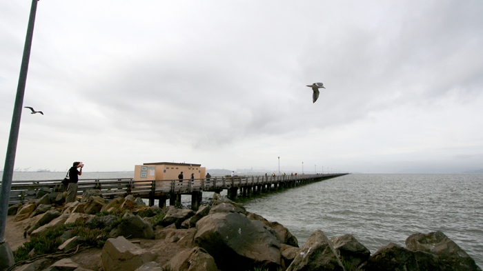 Photo: The Berkeley Pier has been chosen as the site for a new transbay ferry terminal.  The news route will take passengers from Berkeley to San Francisco.