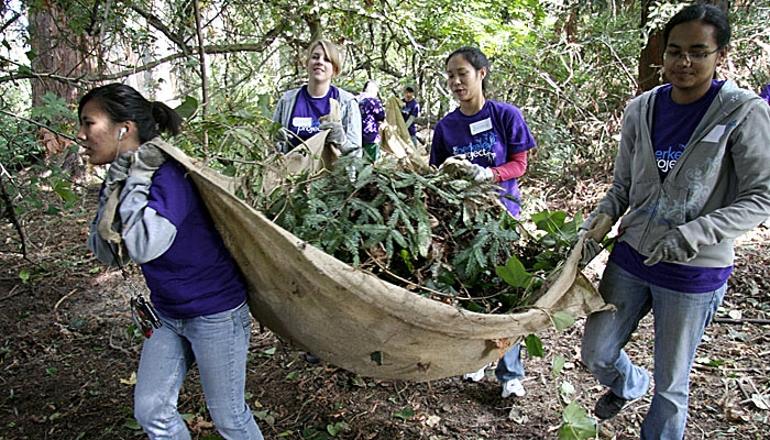 Photo: Volunteers clean up near Strawberry Creek as part of the Berkeley Project Day. This year's project organizers faced funding shortfalls.