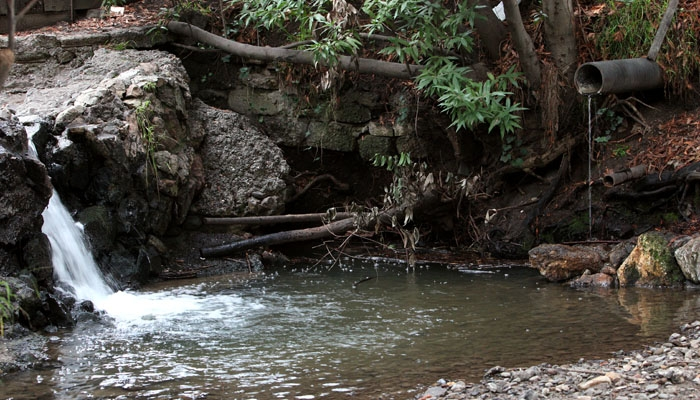 Photo: Strawberry Creek contains some 'contaminated storm run-off from the streets.' Campus researchers found that common household pesticides are polluting state rivers and streams.