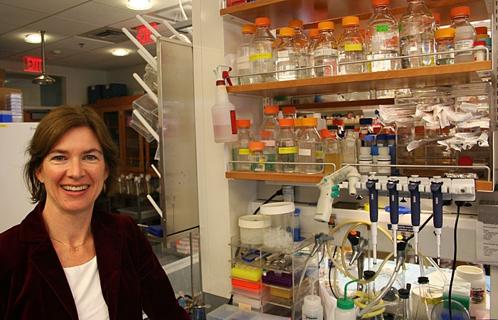 Photo: Professor of biochemistry and molecular biology Jennifer Doudna, shown here in her Stanley Hall laboratory, was elected as one of 65 new members to the Institute of Medicine.