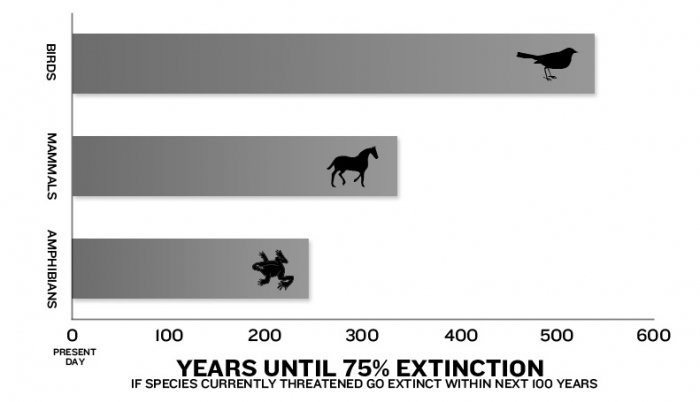 Mass Extinction May Occur In 300 Years, Scientists Say - The Daily ...